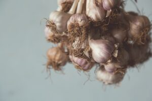 Foods for Breastfeeding Moms - garlic