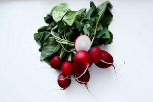natural antibiotics - radish